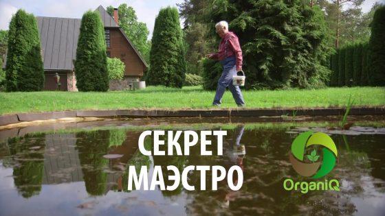 СЕКРЕТ МАЭСТРО!